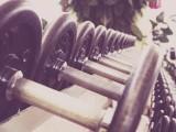 fitness-hanteln-training-594143 Kopie